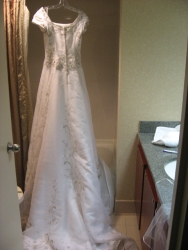 Susan's wedding dress