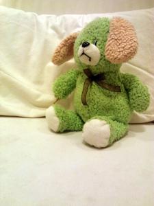 Maria, Fiona's dog-bear