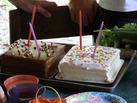 Two birthday cakes: one chocolate, one vanilla.